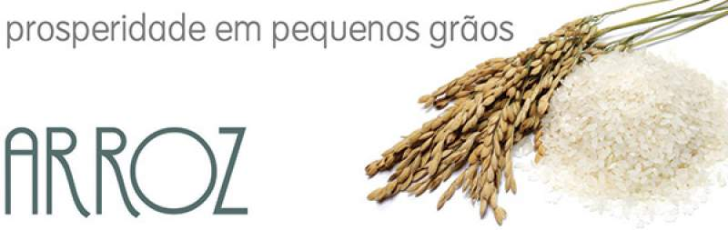 alimentos-sagrados-arroz-nosso-blog.jpg