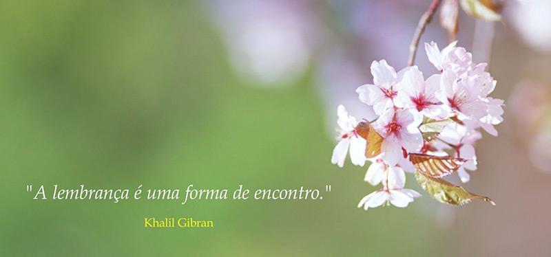 aromas-e-memorias-lembranca-olfativa-emocoes-aromaterapia-relaxamento-meditacao-nosso-blog-imagem.jpg