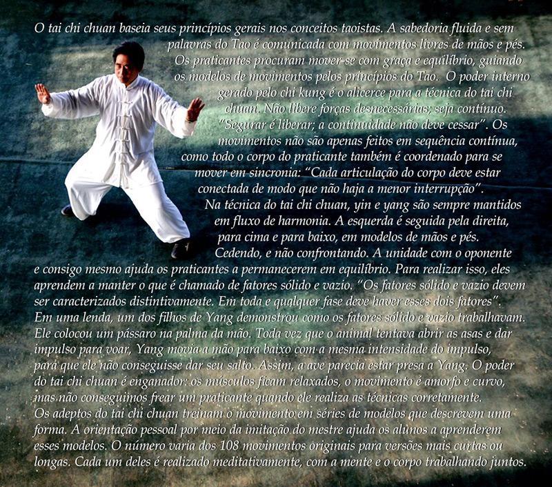 tao-e-artes-marciais-taoismo-tai-chi-chuan-judo-aikido-yin-yang-nosso-blog-texto-1.jpg