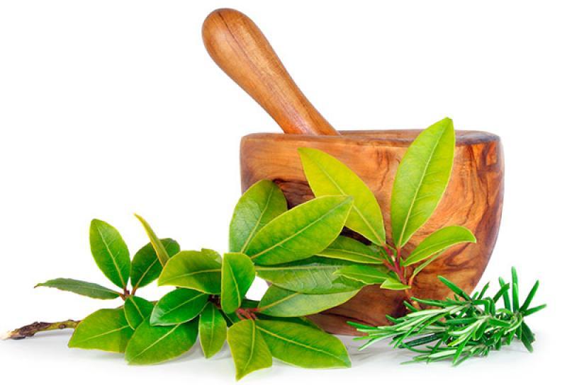 https://www.comprazen.com.br/imgblog/uso-ervas-saude-equilibrio-imagem-nosso-blog.jpg