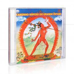 CAMINHO RÁPIDO DO GRANDE ÊXTASE (DUPLO)|GESHE KELSANG GYATSO  -  THARPA BRASIL